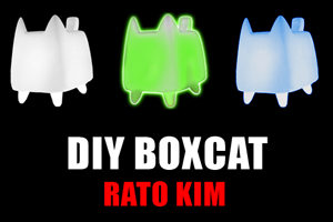 DIY BOXCAT Viny Toy